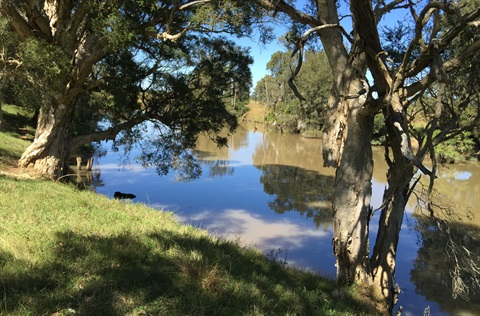 Eastern Creek waterway