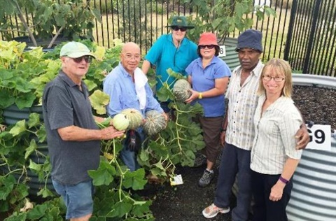Image of community gardeners in Blacktown City