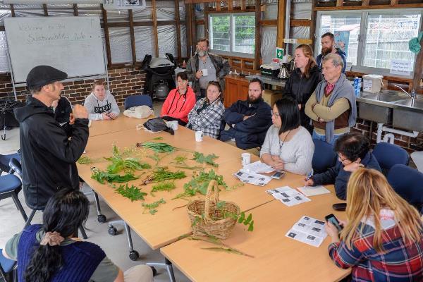 Sustainable Living workshops